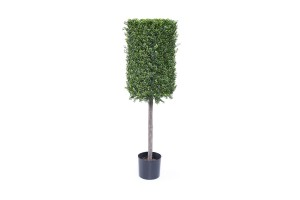 4.5ft. Boxwood Topiary